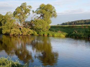 Коттеджный поселок Между лесом и рекой